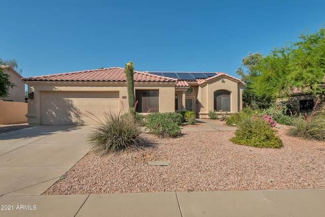 9146 E Janice Way, Scottsdale, AZ 85260 (MLS #6231606) :: Kepple Real Estate Group