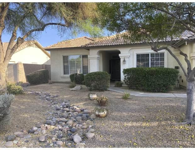 7739 W Alexandria Way, Peoria, AZ 85381 (MLS #6231649) :: Long Realty West Valley