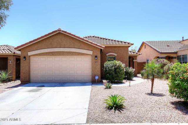 3879 W White Canyon Road, Queen Creek, AZ 85142 (MLS #6231652) :: Yost Realty Group at RE/MAX Casa Grande