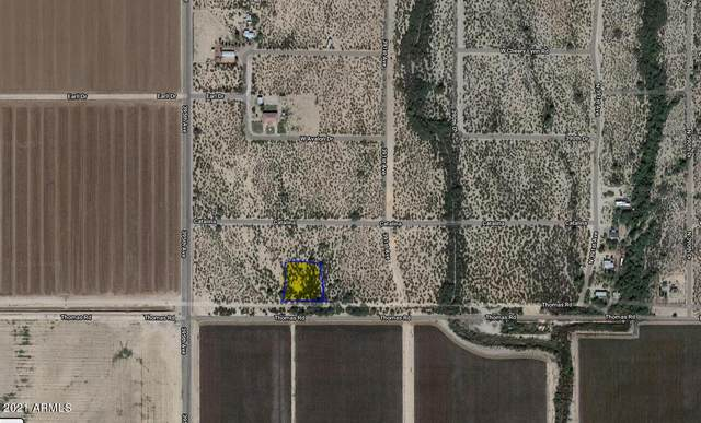 39338 W Thomas Road, Tonopah, AZ 85354 (MLS #6231669) :: Dave Fernandez Team | HomeSmart