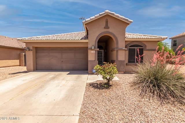 1305 S 117TH Drive, Avondale, AZ 85323 (MLS #6231714) :: The Carin Nguyen Team
