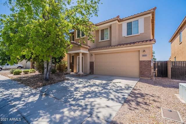 3829 E Longhorn Street, San Tan Valley, AZ 85140 (MLS #6231720) :: Selling AZ Homes Team