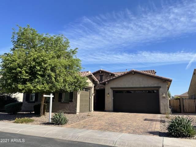 882 E Horseshoe Place, Chandler, AZ 85249 (MLS #6231738) :: Kepple Real Estate Group