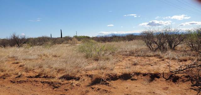 7.12 ac Stephens Ranch Road, Huachuca City, AZ 85616 (MLS #6231748) :: ASAP Realty