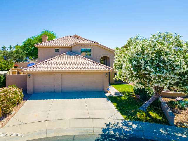 1022 N Poplar Court, Chandler, AZ 85226 (MLS #6231757) :: Kepple Real Estate Group
