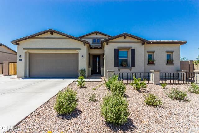 40638 N Spotted Lane, San Tan Valley, AZ 85140 (MLS #6231785) :: Yost Realty Group at RE/MAX Casa Grande