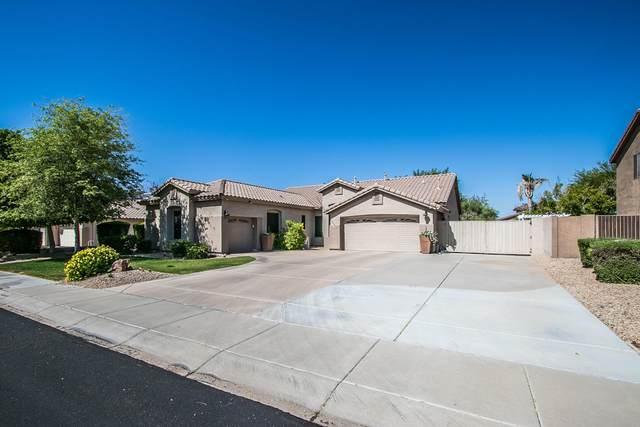 22462 N 80TH Lane, Peoria, AZ 85383 (MLS #6231790) :: Kepple Real Estate Group