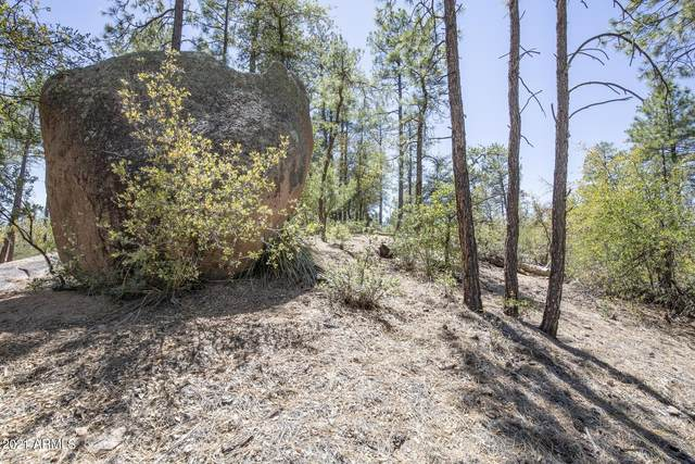 3006 E Game Trail, Payson, AZ 85541 (MLS #6231794) :: CANAM Realty Group