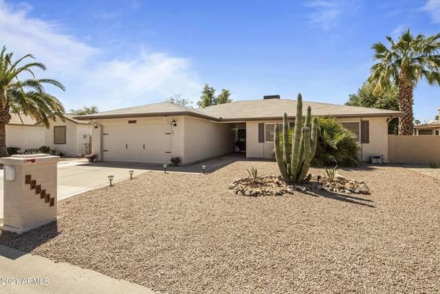 26614 S Pear Tree Drive, Sun Lakes, AZ 85248 (MLS #6231813) :: The Copa Team | The Maricopa Real Estate Company