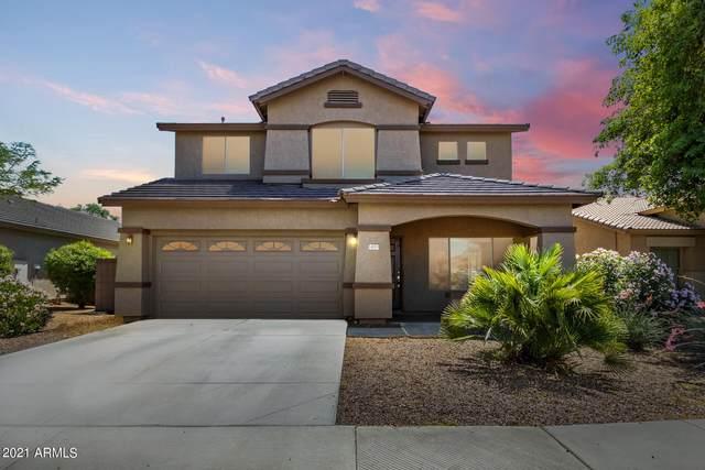 14013 N 145TH Lane, Surprise, AZ 85379 (MLS #6231816) :: The Ethridge Team
