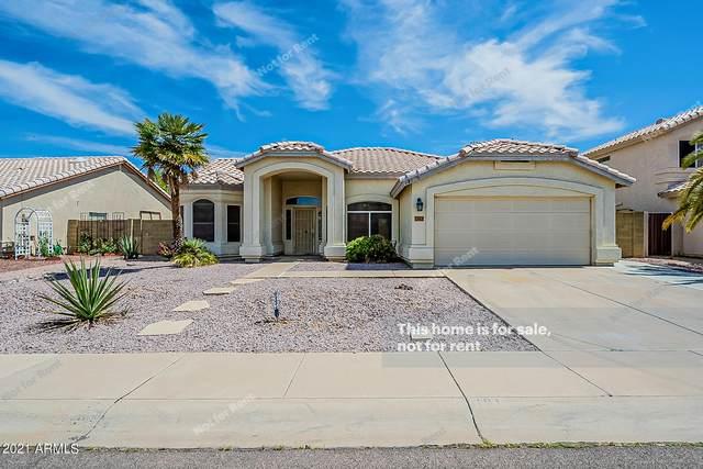 181 S Longmore Street, Chandler, AZ 85224 (MLS #6231818) :: The Luna Team