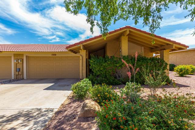 12009 S Tonopah Drive, Phoenix, AZ 85044 (MLS #6231822) :: Kepple Real Estate Group