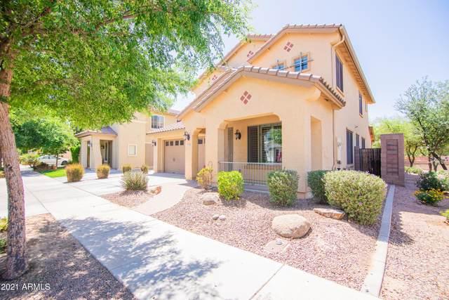 19069 E Kingbird Court, Queen Creek, AZ 85142 (MLS #6231823) :: Yost Realty Group at RE/MAX Casa Grande