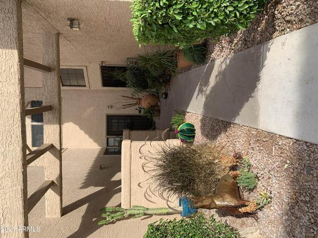 1001 N Pasadena Street #45, Mesa, AZ 85201 (MLS #6231826) :: Kepple Real Estate Group