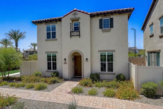 29331 N 122ND Glen, Peoria, AZ 85383 (MLS #6231873) :: The Laughton Team