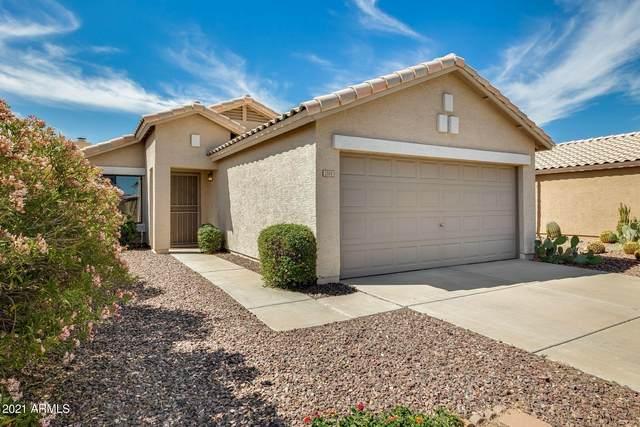 2105 E Robin Lane, Phoenix, AZ 85024 (MLS #6231874) :: Kepple Real Estate Group