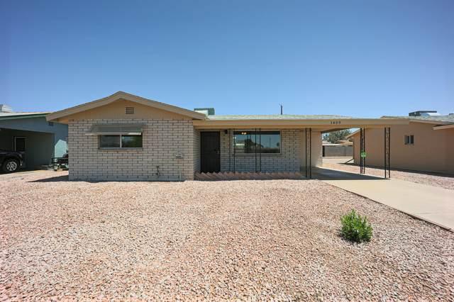 1409 S Delaware Drive, Apache Junction, AZ 85120 (MLS #6231899) :: D & R Realty LLC