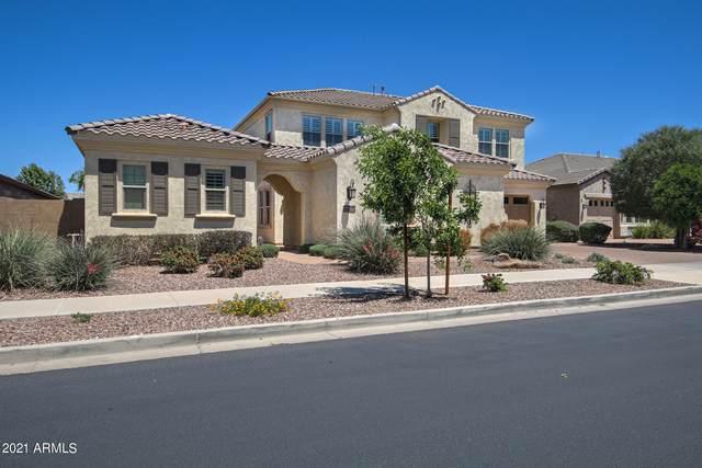 22302 E Escalante Road, Queen Creek, AZ 85142 (MLS #6231906) :: Klaus Team Real Estate Solutions