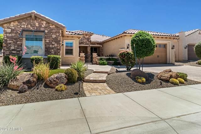 19555 N 269TH Drive, Buckeye, AZ 85396 (MLS #6231931) :: Conway Real Estate