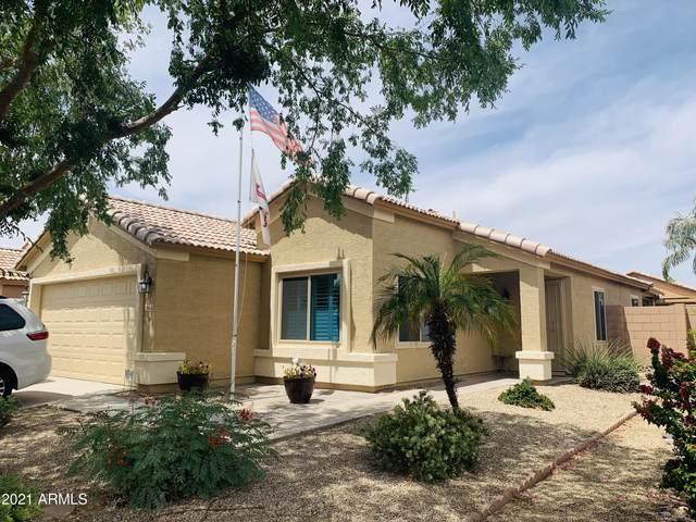 10626 E Emerald Avenue, Mesa, AZ 85208 (MLS #6231987) :: Arizona Home Group