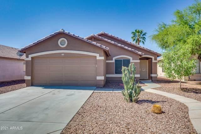 14959 W Maui Lane, Surprise, AZ 85379 (MLS #6232040) :: Conway Real Estate