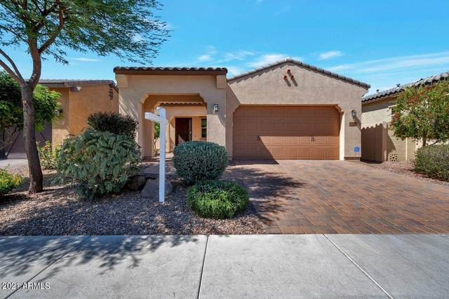 2890 E Citrus Way, Chandler, AZ 85286 (MLS #6232083) :: Yost Realty Group at RE/MAX Casa Grande