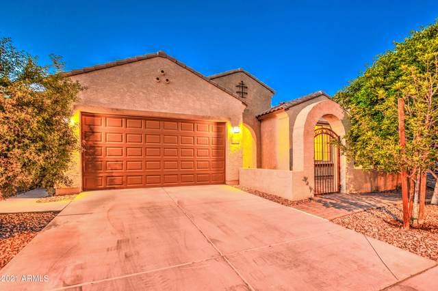 3542 E Megan Street, Gilbert, AZ 85295 (MLS #6232137) :: Conway Real Estate