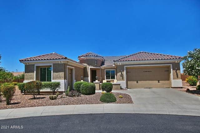7461 W Ricarda Court, Florence, AZ 85132 (MLS #6232164) :: My Home Group
