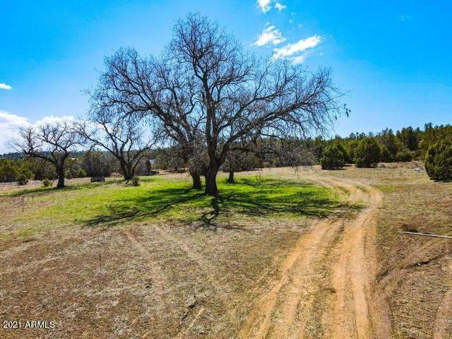 19J W Stageline Road, Payson, AZ 85541 (MLS #6232174) :: CANAM Realty Group