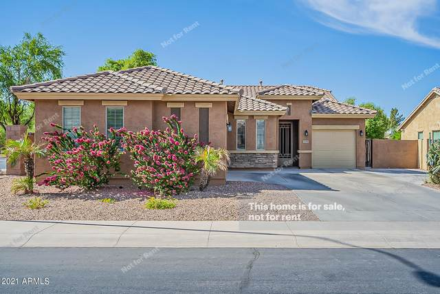 2151 E Yellowstone Place, Chandler, AZ 85249 (MLS #6232188) :: Conway Real Estate