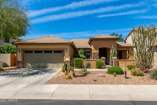 6729 S Pewter Way, Chandler, AZ 85249 (MLS #6232203) :: Yost Realty Group at RE/MAX Casa Grande