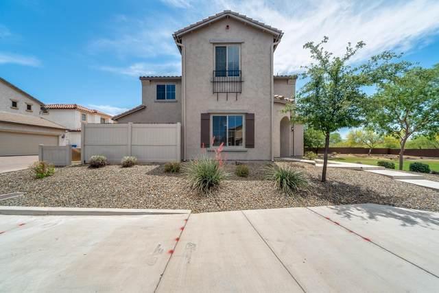 5357 W Marcus Drive, Phoenix, AZ 85083 (MLS #6232245) :: My Home Group