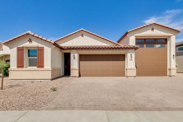 24200 N Rooster Road, Florence, AZ 85132 (MLS #6232262) :: Yost Realty Group at RE/MAX Casa Grande