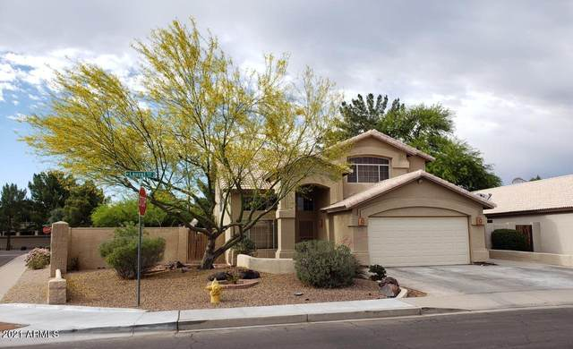 1124 W Laurel Avenue, Gilbert, AZ 85233 (MLS #6232314) :: Yost Realty Group at RE/MAX Casa Grande