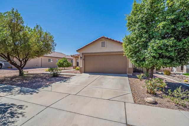 3125 W Casino Avenue, Phoenix, AZ 85083 (MLS #6232367) :: Conway Real Estate