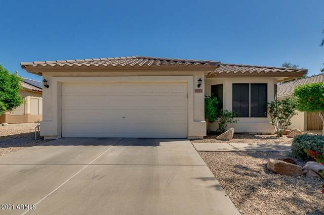 5181 W Campo Bello Drive, Glendale, AZ 85308 (MLS #6232389) :: Conway Real Estate