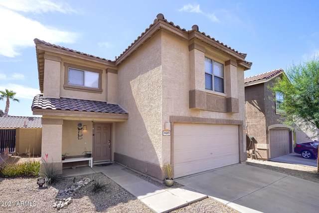 16205 S 17TH Drive, Phoenix, AZ 85045 (MLS #6232406) :: Yost Realty Group at RE/MAX Casa Grande