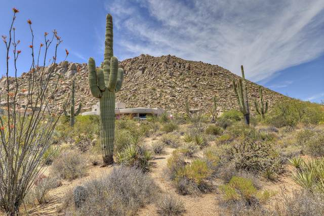 11355 E Yearling Drive, Scottsdale, AZ 85255 (MLS #6232448) :: My Home Group