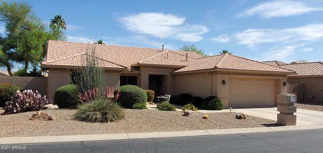 9210 E Rocky Lake Drive, Sun Lakes, AZ 85248 (MLS #6232485) :: Midland Real Estate Alliance