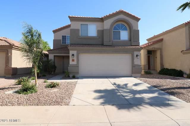 3025 E Blackhawk Drive, Phoenix, AZ 85050 (MLS #6232498) :: The Copa Team | The Maricopa Real Estate Company