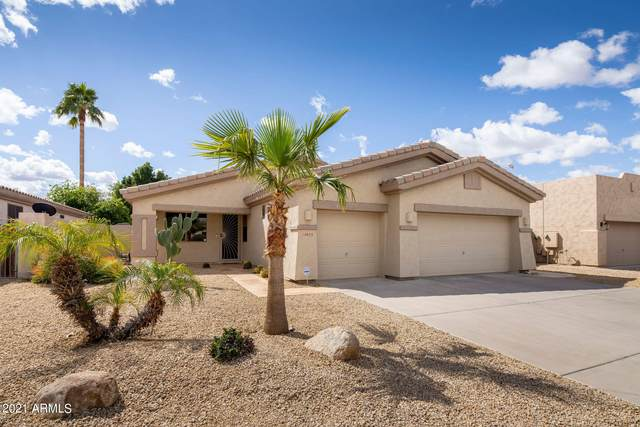 14655 W Catalina Drive, Goodyear, AZ 85395 (MLS #6232532) :: Executive Realty Advisors