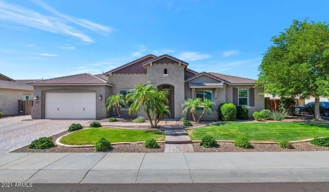 9383 W Via Montoya Drive, Peoria, AZ 85383 (MLS #6232538) :: Yost Realty Group at RE/MAX Casa Grande