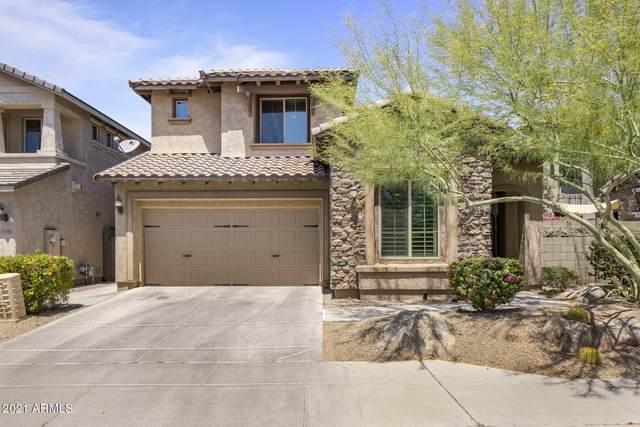 3734 E Matthew Drive, Phoenix, AZ 85050 (MLS #6232542) :: Conway Real Estate