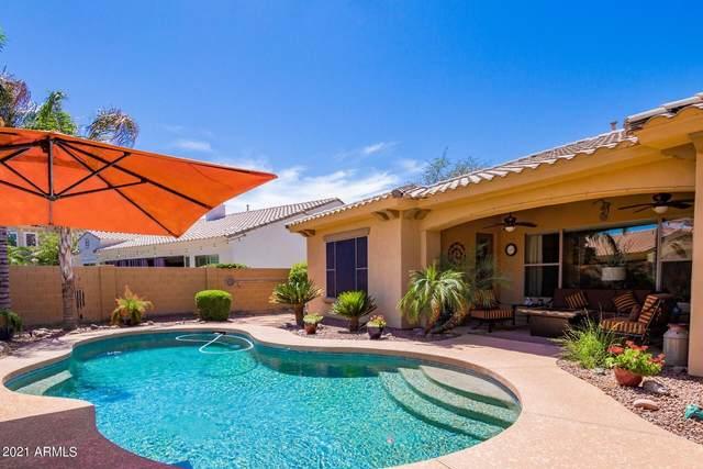 3731 E San Mateo Way, Chandler, AZ 85249 (MLS #6232544) :: Yost Realty Group at RE/MAX Casa Grande