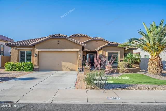 3481 E Isaiah Avenue, Gilbert, AZ 85298 (MLS #6232547) :: Yost Realty Group at RE/MAX Casa Grande