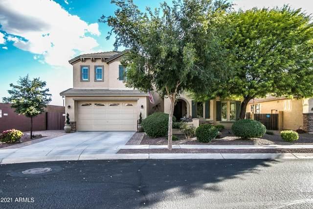 25600 N Desert Mesa Drive, Surprise, AZ 85387 (MLS #6232568) :: Yost Realty Group at RE/MAX Casa Grande
