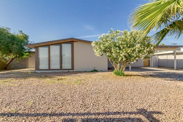 6438 W Heatherbrae Drive, Phoenix, AZ 85033 (MLS #6232575) :: The Laughton Team