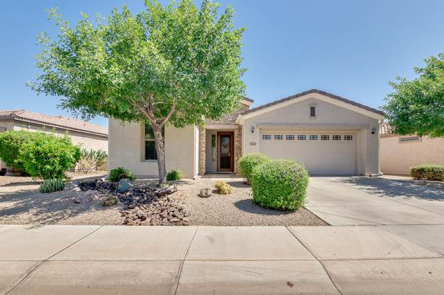 4445 E Carob Drive, Gilbert, AZ 85298 (MLS #6232579) :: My Home Group