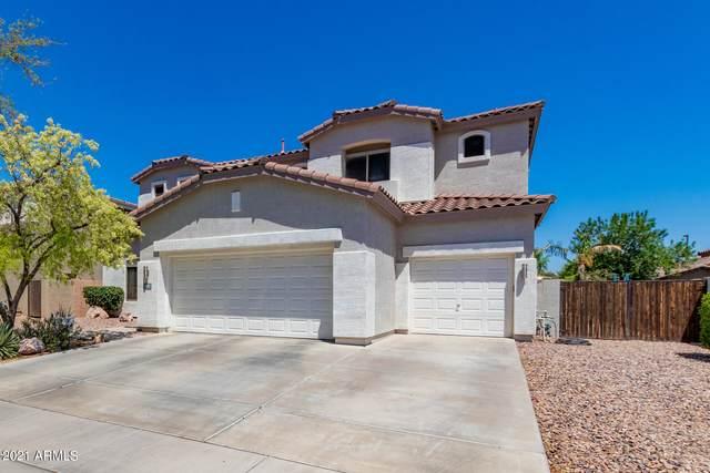 4034 E Reins Road, Gilbert, AZ 85297 (MLS #6232618) :: My Home Group