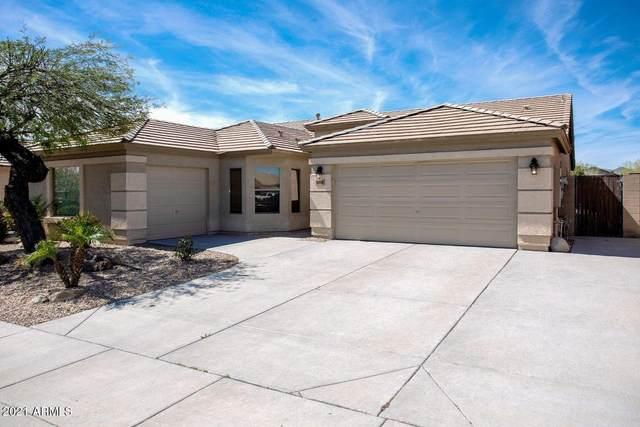 16010 N 174TH Lane, Surprise, AZ 85388 (MLS #6232624) :: Long Realty West Valley